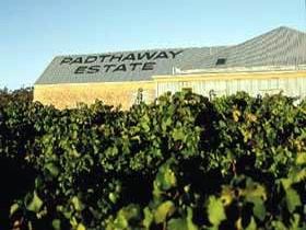 Padthaway Estate Winery - Accommodation Daintree