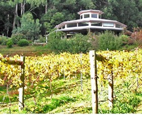 Peveril Vineyard/Beechy Berries - Accommodation Daintree