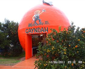 Gayndahs Big Orange - Accommodation Daintree