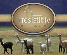 Marchmont Park Alpacas - Accommodation Daintree
