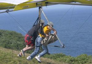 Air Sports - Accommodation Daintree