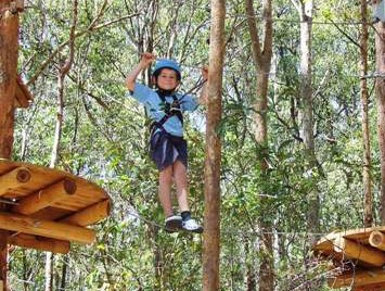 TreeTops Newcastle - Accommodation Daintree