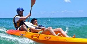 Go Sea Kayak - Accommodation Daintree