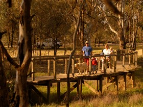 Loxton's Drives Walks and Trails - Accommodation Daintree