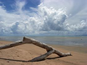 Toolakea Beach - Accommodation Daintree