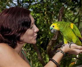 Birdworld Kuranda - Accommodation Daintree