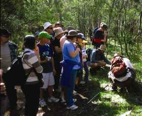 Warrumbungle National Park Discovery Program - Accommodation Daintree