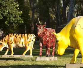 Greater Shepparton's Moooving Art