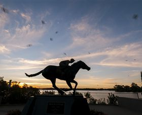 Black Caviar Statue - Accommodation Daintree