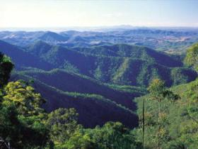 Kroombit Tops National Park - Accommodation Daintree