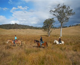 Chapman Valley Horse Riding - Accommodation Daintree