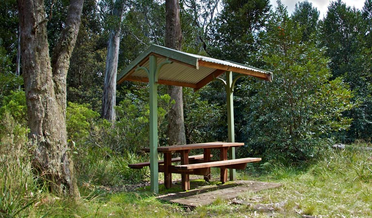 Devils Hole lookout walk and picnic area - Accommodation Daintree