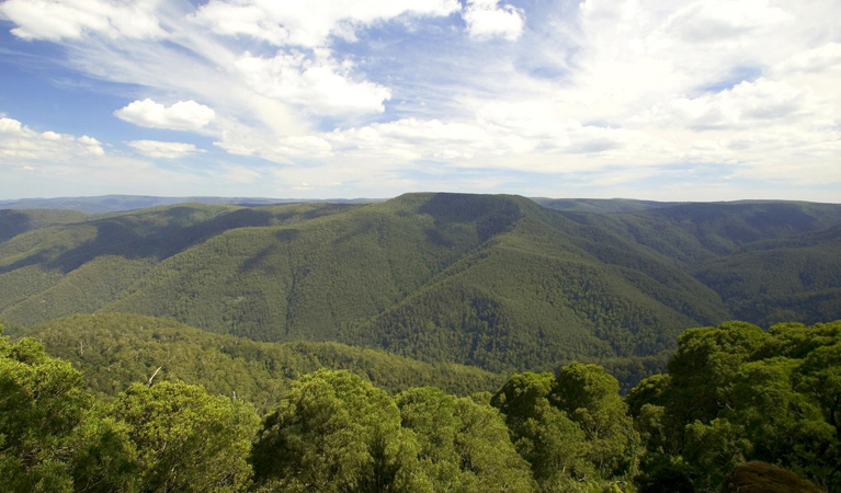 Barrington Tops National Park - Accommodation Daintree