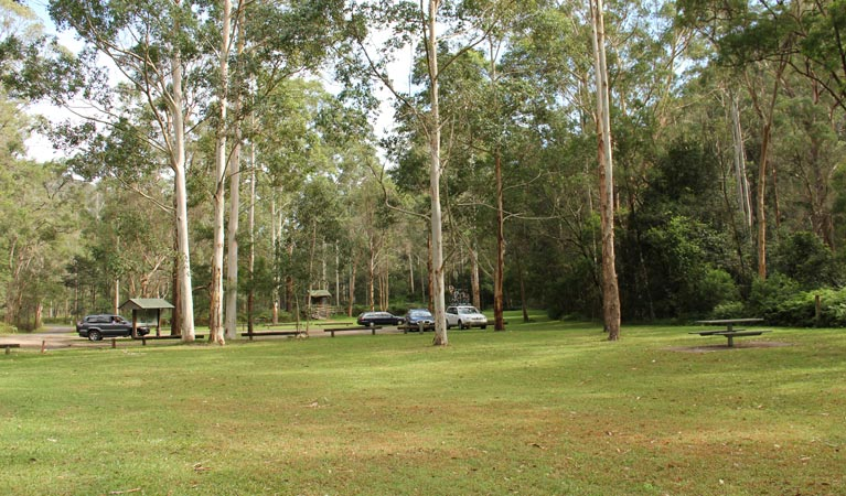 Mill Creek picnic area - Accommodation Daintree