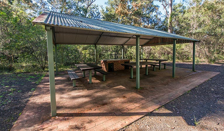 Brimbin picnic area - Accommodation Daintree