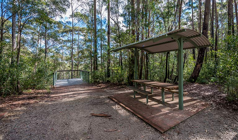 Big Nellie lookout and picnic area - Accommodation Daintree