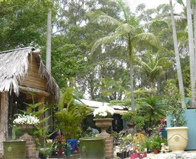 Diamond Waters Garden Nursery - Accommodation Daintree