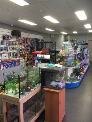 Nambour Pet Shop - Accommodation Daintree