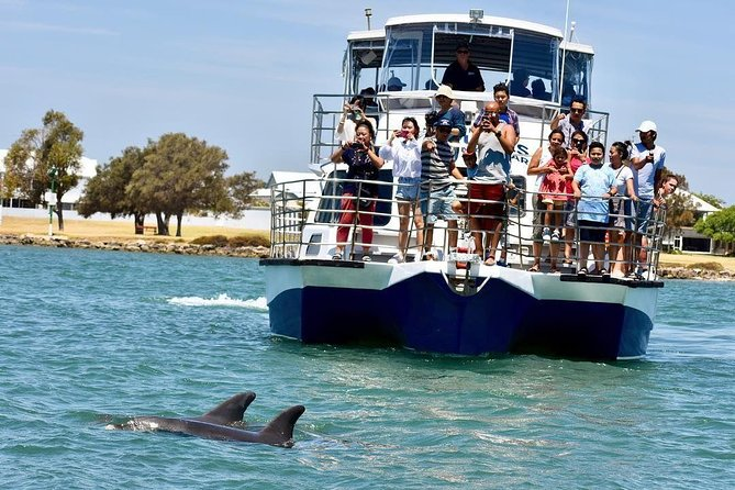 Mandurah Dolphin and Scenic Canal Cruise - Accommodation Daintree