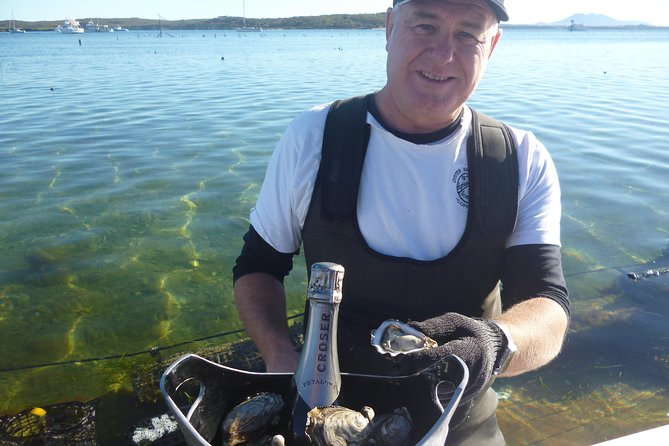 Coffin Bay Oyster Farm  Tasting Tour - Accommodation Daintree