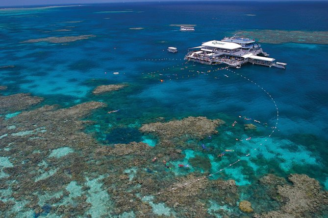 Quicksilver Outer Great Barrier Reef Snorkel Cruise from Port Douglas - Accommodation Daintree