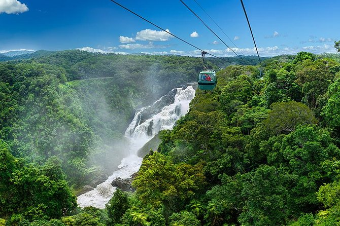 Skyrail Rainforest Cableway Day Trip from Port Douglas - Accommodation Daintree