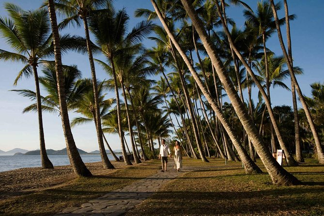 Port Douglas Round-Trip Transfer from Cairns with Free Time in Port Douglas - Accommodation Daintree