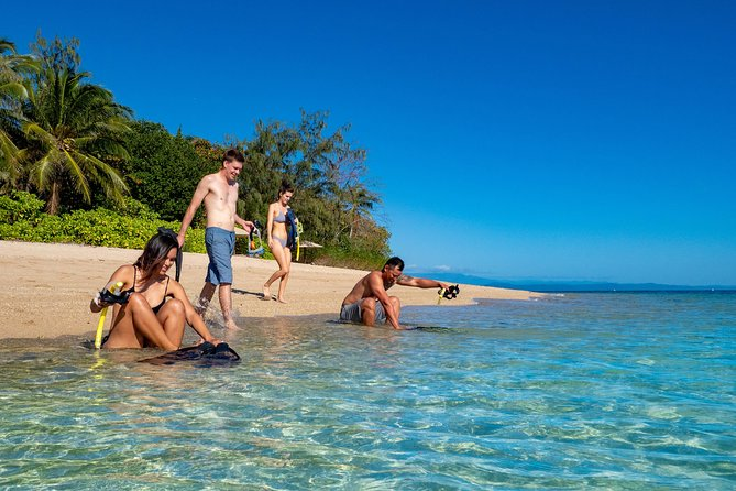 Half Day Low Isles Snorkelling Tour from Port Douglas - Accommodation Daintree