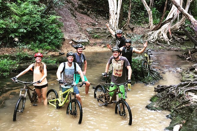 Half Day Bump Track MTB Ride - Accommodation Daintree
