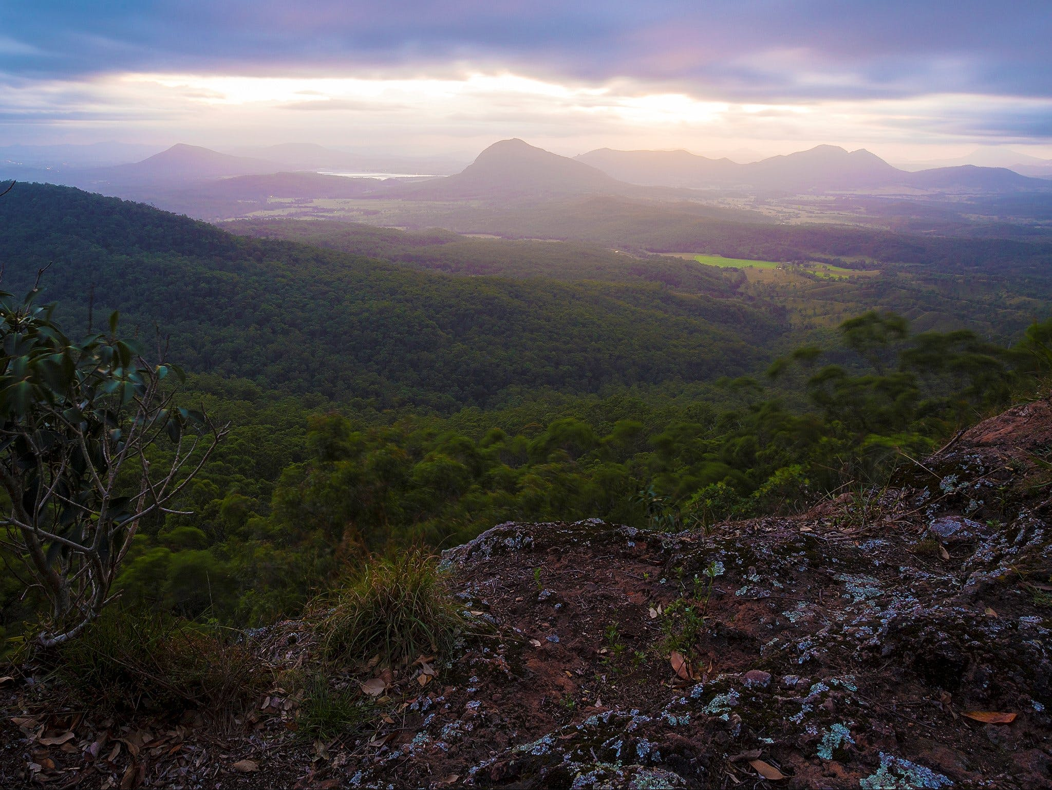 Cunninghams Gap and Spicers Gap Main Range National Park - Accommodation Daintree