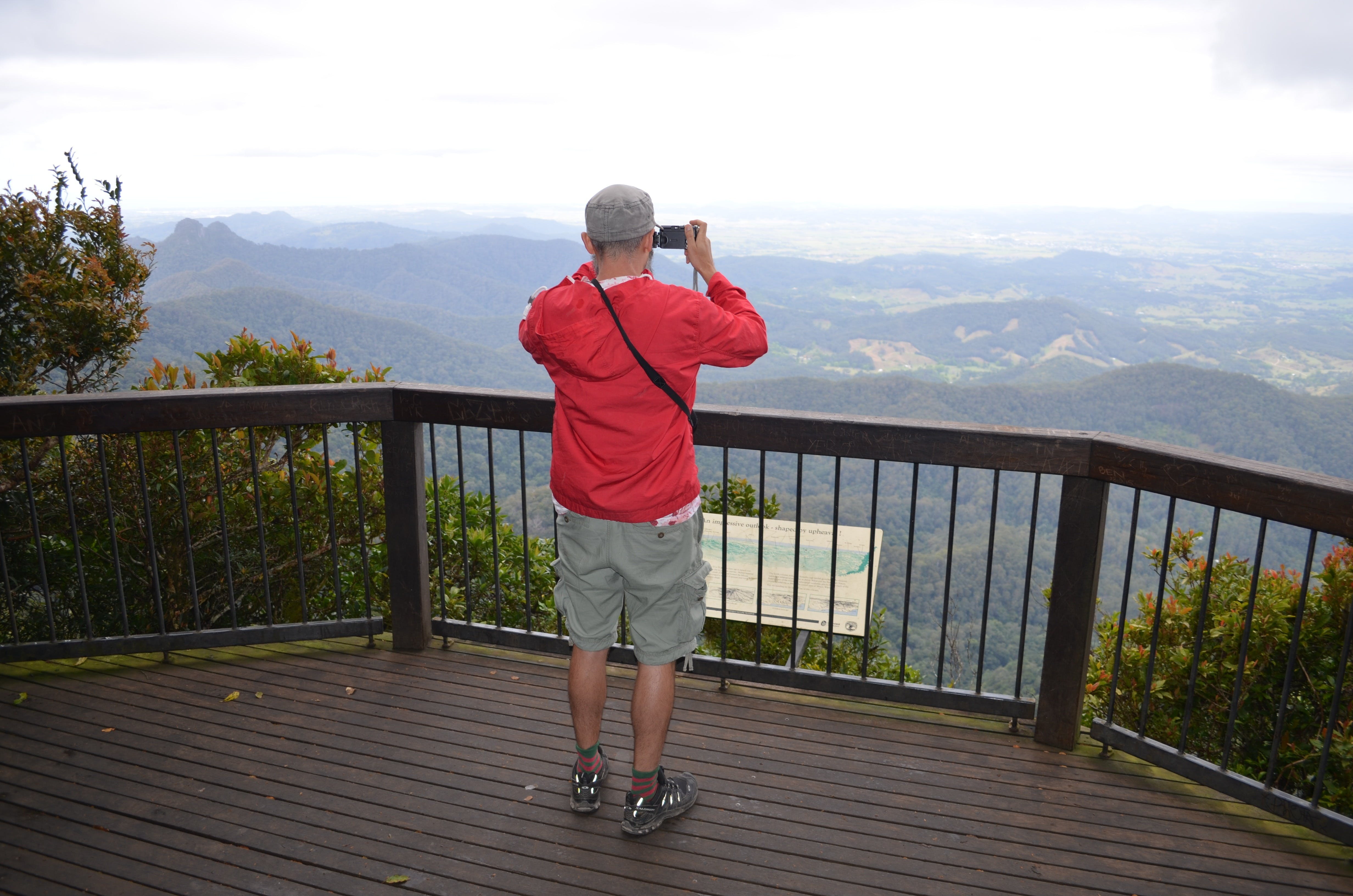 Best of All lookout track Springbrook National Park - Accommodation Daintree