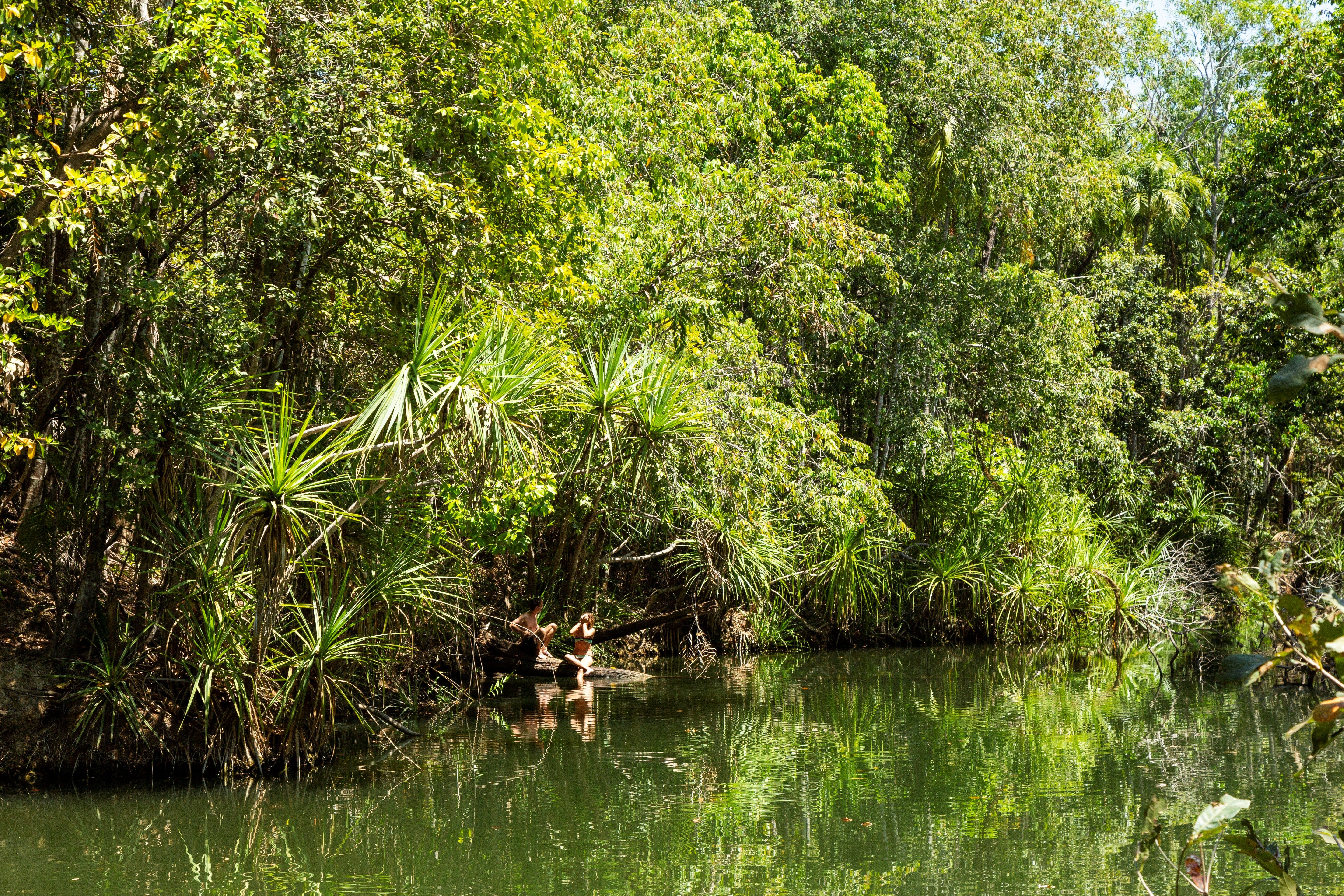 Berry Springs Nature Park - Accommodation Daintree