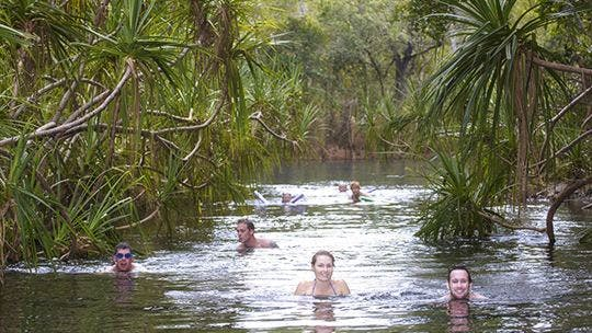Berry Springs - Accommodation Daintree