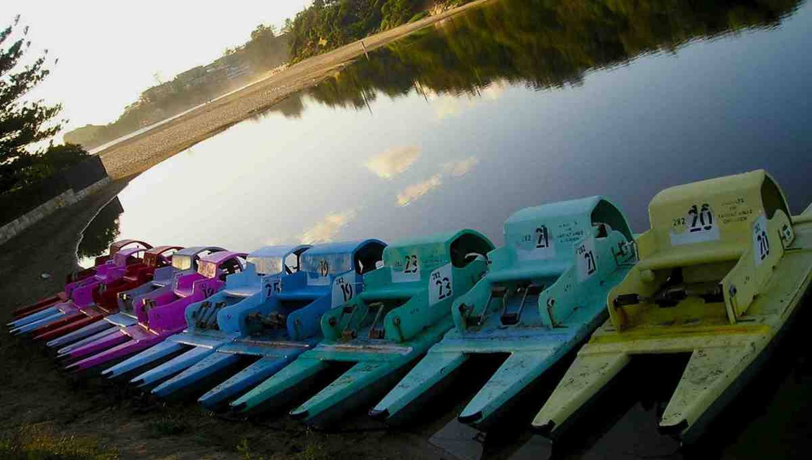 Terrigal Paddle Boats and Stand Up Paddle Boards - Accommodation Daintree