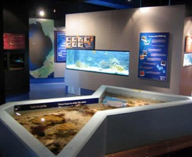 Marine and Freshwater Discovery Centre - Accommodation Daintree
