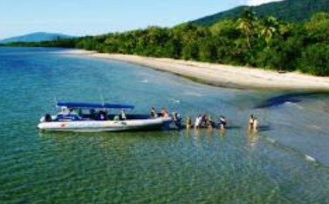 Ocean Safari - Accommodation Daintree