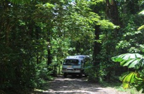 BTS Tours Pty Ltd - Accommodation Daintree