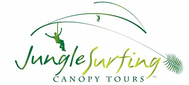 Jungle Surfing Canopy Tours and Jungle Adventures Nightwalks - Accommodation Daintree