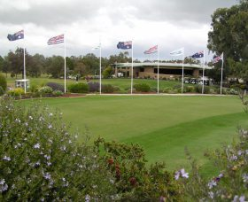 Tocumwal Golf Club - Accommodation Daintree