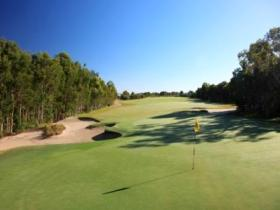 Pelican Waters Golf Club - Accommodation Daintree
