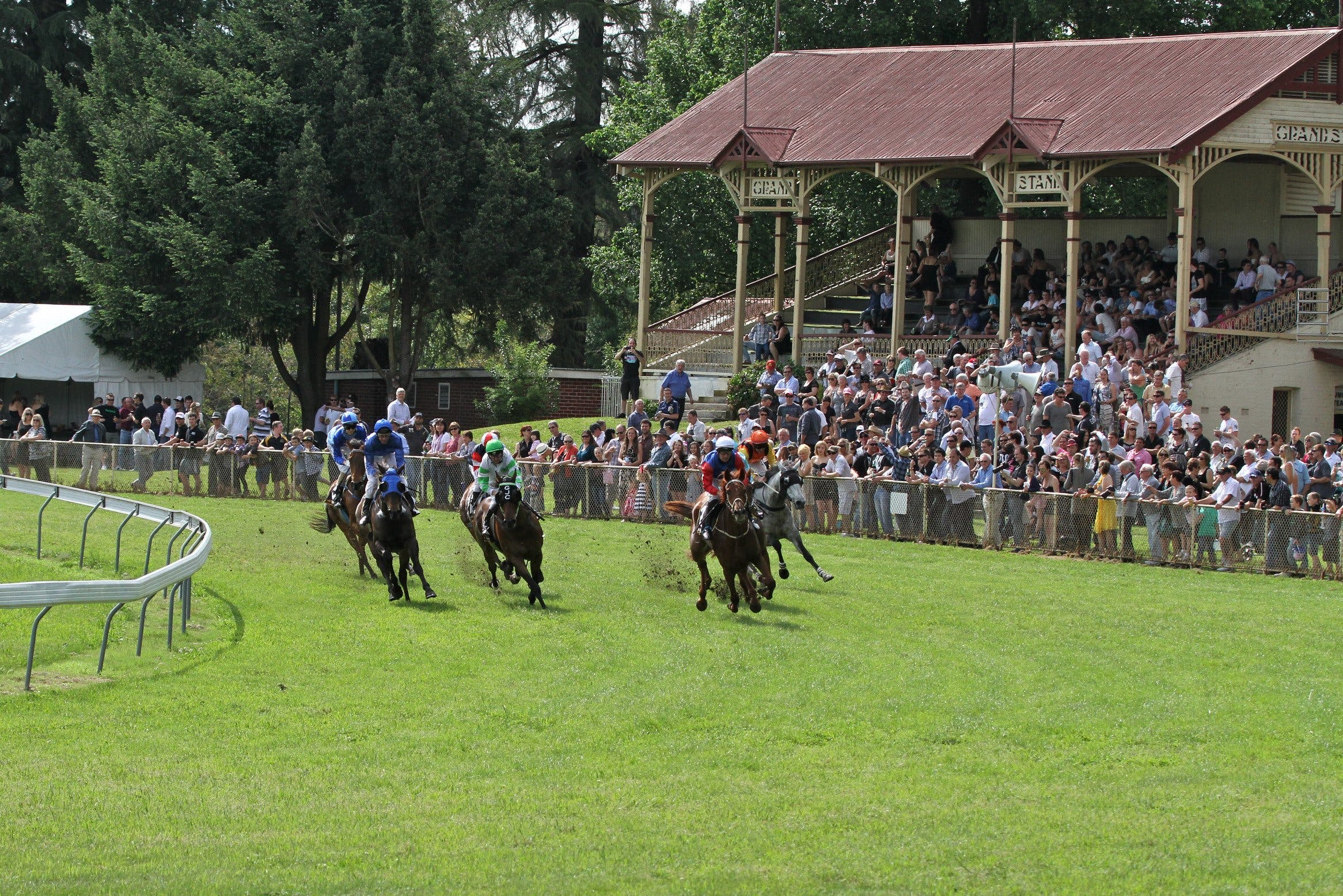 Tumut Derby Day - Accommodation Daintree