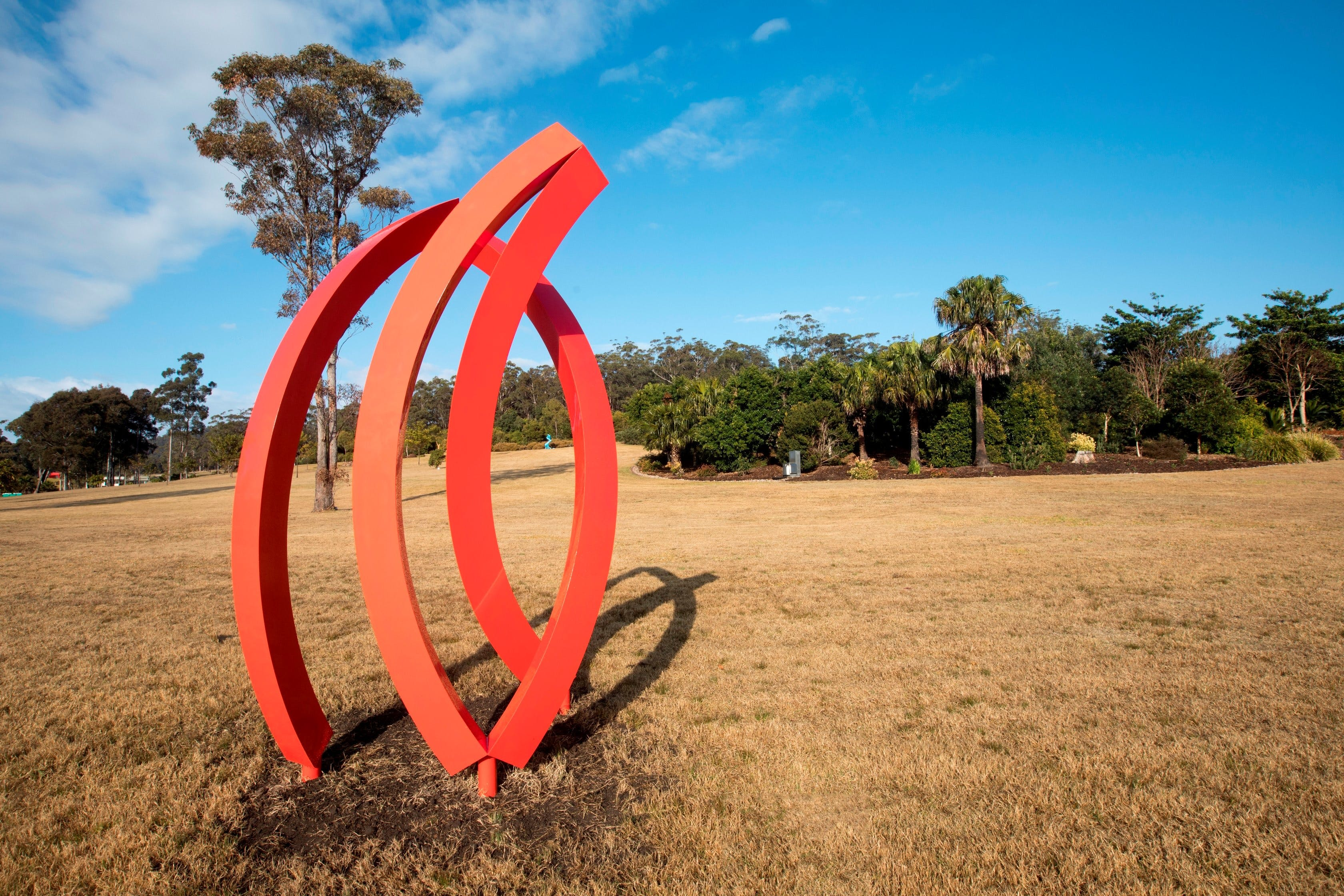Sculpture for Clyde - Accommodation Daintree