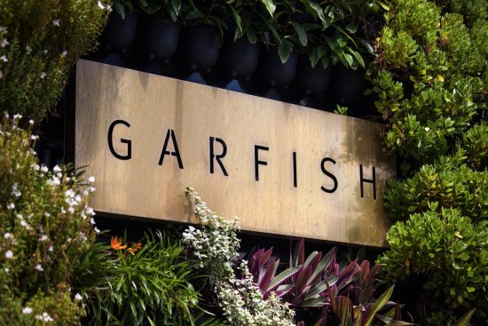 Garfish - Accommodation Daintree