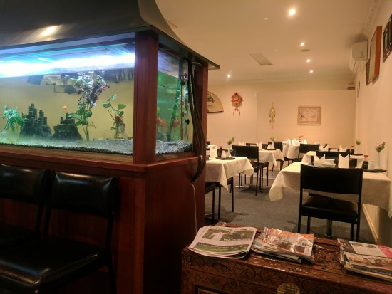Furama Chinese Restaurant - Accommodation Daintree