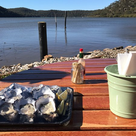 Hawkesbury River Oyster Shed - Accommodation Daintree
