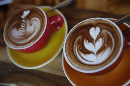 Cosmo Coffee at Tuggerah - Accommodation Daintree