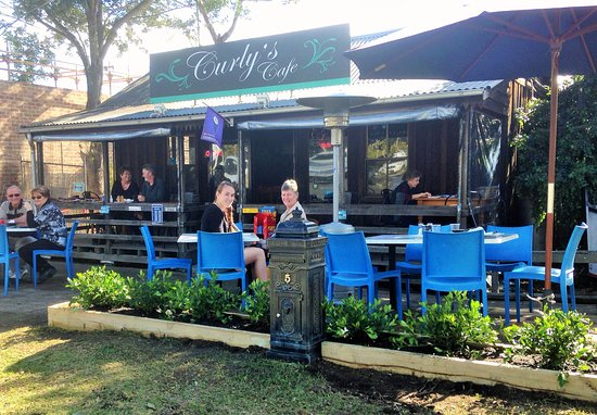 Curly's Cafe - Accommodation Daintree