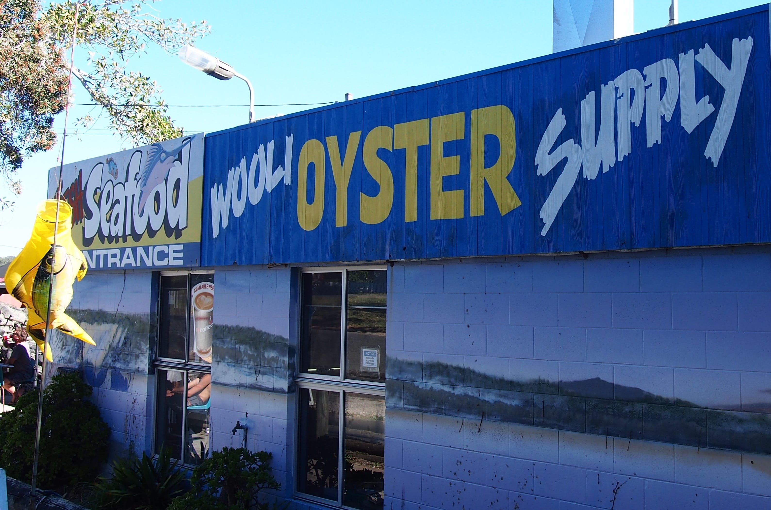 Wooli Oyster Supply and Seafood Co-op - Accommodation Daintree