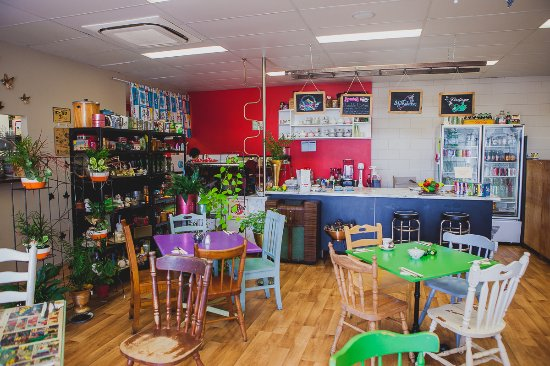 The Cat's Meow Cafe - Accommodation Daintree