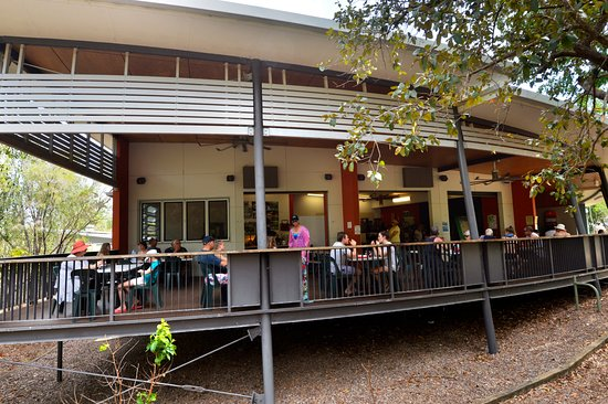 Wangi Falls Cafe - Accommodation Daintree
